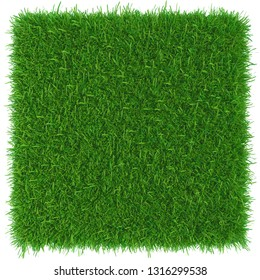 Grashintergrundstruktur. frisches Gras. 3D-Rendering