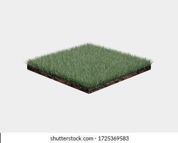 Grass Field 3D White Background