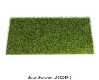 Grass isolated on white background. 3d rendering illustration.