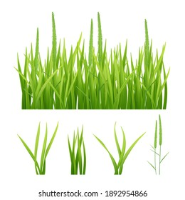 Grass realistic. Green nature pictures of grass and leaves plantain objects