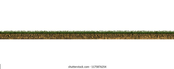 grass section isolated on white background 3d illustration