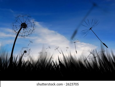 Grass and seeds blowing in the late sky.