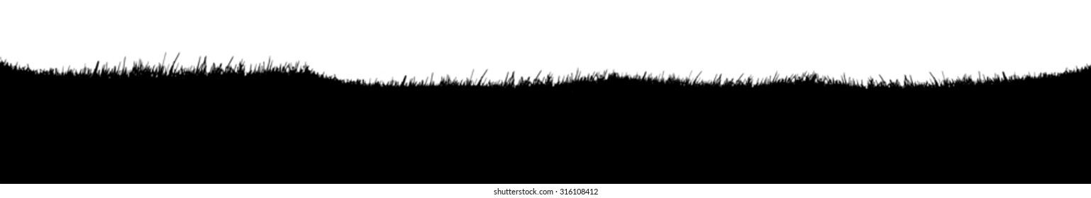 Grass Silhouette isolated on white background.