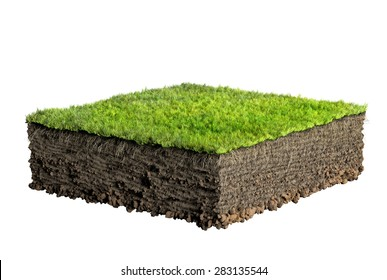 grass and soil profile