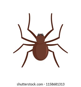 Grass spider icon. Flat illustration of grass spider icon for web isolated on white