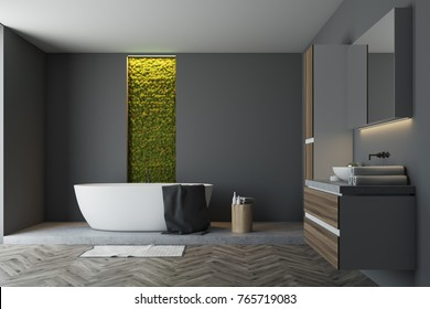 Gray bathroom interior with a wooden floor, a white bathtub, a sink, several closets and a narrow window with shrubbery behind it. 3d rendering mock up