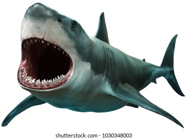 Great white shark 3D illustration