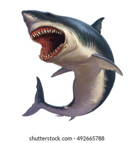 Shark Illustrations Images, Stock Photos & Vectors | Shutterstock