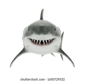 Great White Shark Isolated. Front angle 3D Rendering