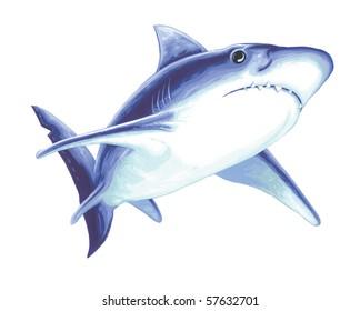 Great White Shark Painting