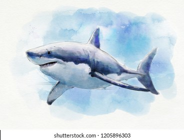 THE GREAT WHITE SHARK WATERCOLOR PAINTING