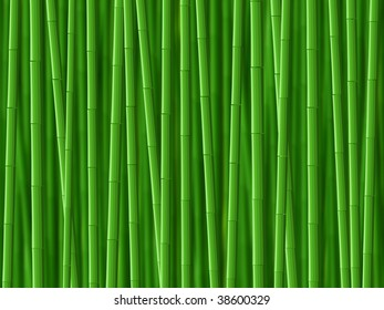green bamboo illustration background