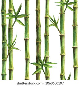 Green bamboo stems and leaves seamless pattern on white background. Watercolor hand drawn botanical illustration. Print for textile, wallpaper, wrapping