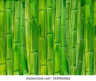 Green bamboo stems. Watercolor hand drawn  illustration .