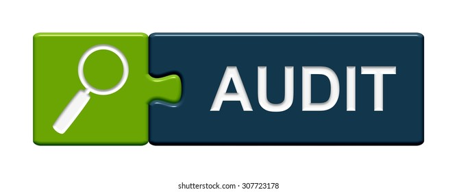 A green and blue Puzzle Button showing Audit