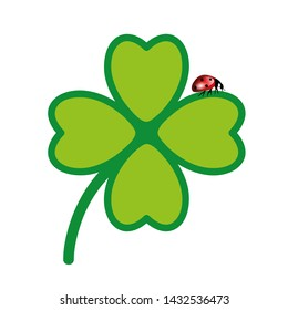 green cloverleaf with lady bug isolated on white background  illustration