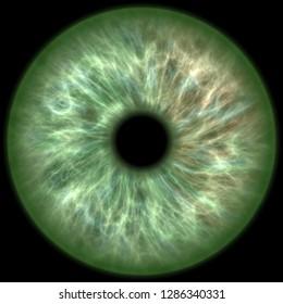 green colored eye iris
