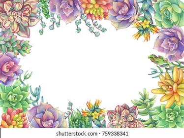 Green floral square frame with leaves, succulent collection. Watercolor hand drawn painting illustration isolated on white background.
