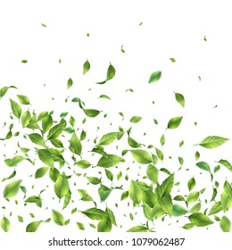 Green flying or falling off leaves. Abstract foliage background