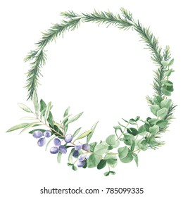 Green foliage round wreath with eucalyptus, olive trees and rosemary brances. Watercolor hand drawn illustration