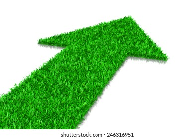 Green Grass Arrow, Direction Concept 3D Illustration on White Background