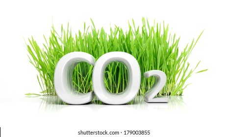 Green grass with CO2 3D text ecological concept isolated