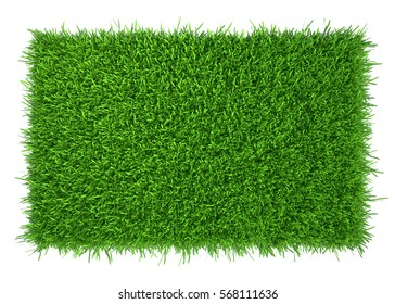 green grass field background. 3d rendering nature