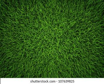 Green grass field background. Top view, 3d render