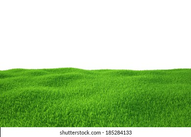 Green grass field. nature background. Empty Grass Field.