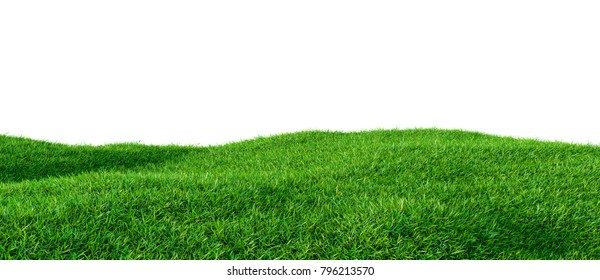 Green grass field on small hills, isolated on white background. 3d illustration