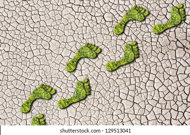 Green grass growing footprints on cracked earth background