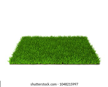 Green grass lawn. 3d illustration isolated on white background