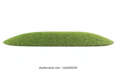Green grass on white background 3d renderings