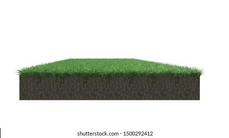 Green grass on white background with di-cut paths  3d renderings