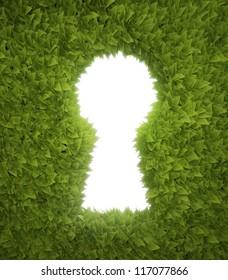 Green hedge opening shaped like a keyhole