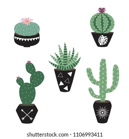 green house plants in the black pots haworthia cactus peyote aloe sansevieria scandinavian style boho illustration icon set raster copy.