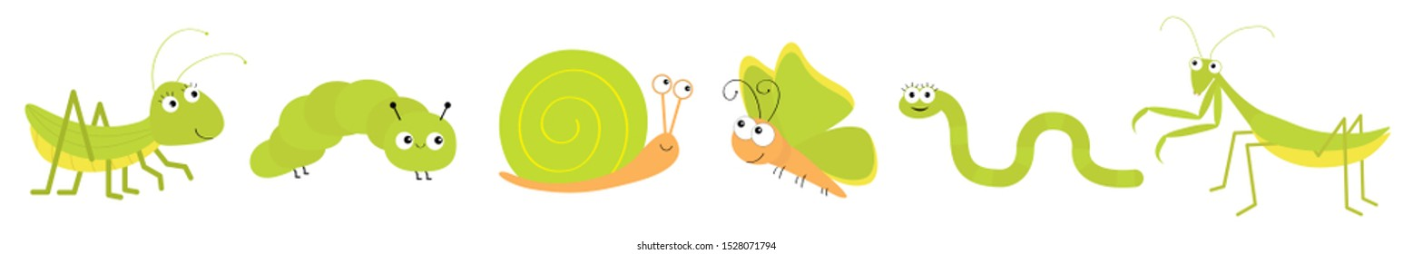 Green insect icon set line. Mantis praying, grasshopper, butterfly, caterpillar, snail, worm. Cute cartoon kawaii funny character. Smiling face. Flat design. Baby clip art White background