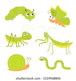 Green insect icon set. Mantis praying, grasshopper, butterfly, caterpillar, snail, worm. Cute cartoon kawaii funny character. isolated. Smiling face. Flat design. Baby clip art White background