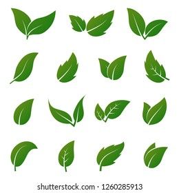 Green leaf icons. Spring leaves ecology symbols