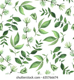 Green leaf on white background/ watercolor garden