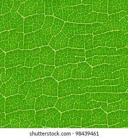 Green leaf seamless pattern  - texture background for continuous replicate.