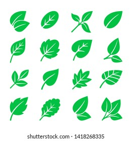 Green leaves icons. leaf symbols illustration, trees leafs signs isolated on white for natural logo and green labels