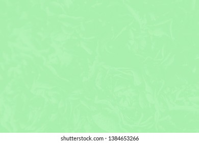Green mint color background with a delicate rose floral pattern. Absract background