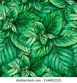 Green Mint Foliage Seamless Pattern. Tea Herb Theme Object Repeating. Marker Hand Painted Realistic Drawing Illustration of Peppermint or Spearmint Botany Plant with Black Contour. Herbal Medicine
