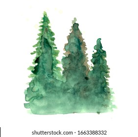 Green pine trees watercolor set in white background. Fir trees silhouettes and splashes background. Watercolor abstract woodland