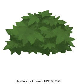 Green plant bush leaves hand drawn illustration isolated on white background