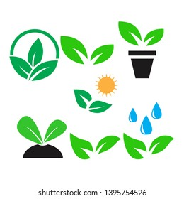 green plant and leave color icons set