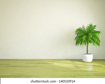 A  green plant near the plastered wall