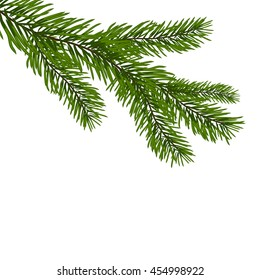 Green, realistic branch of fir. Fir branches. Isolated on white. Christmas raster  illustration