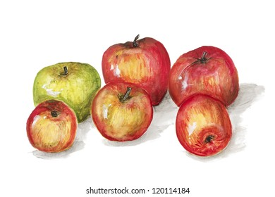 Green and red apples   fruits  isolated - handmade acrylic painting illustration on a white paper art background